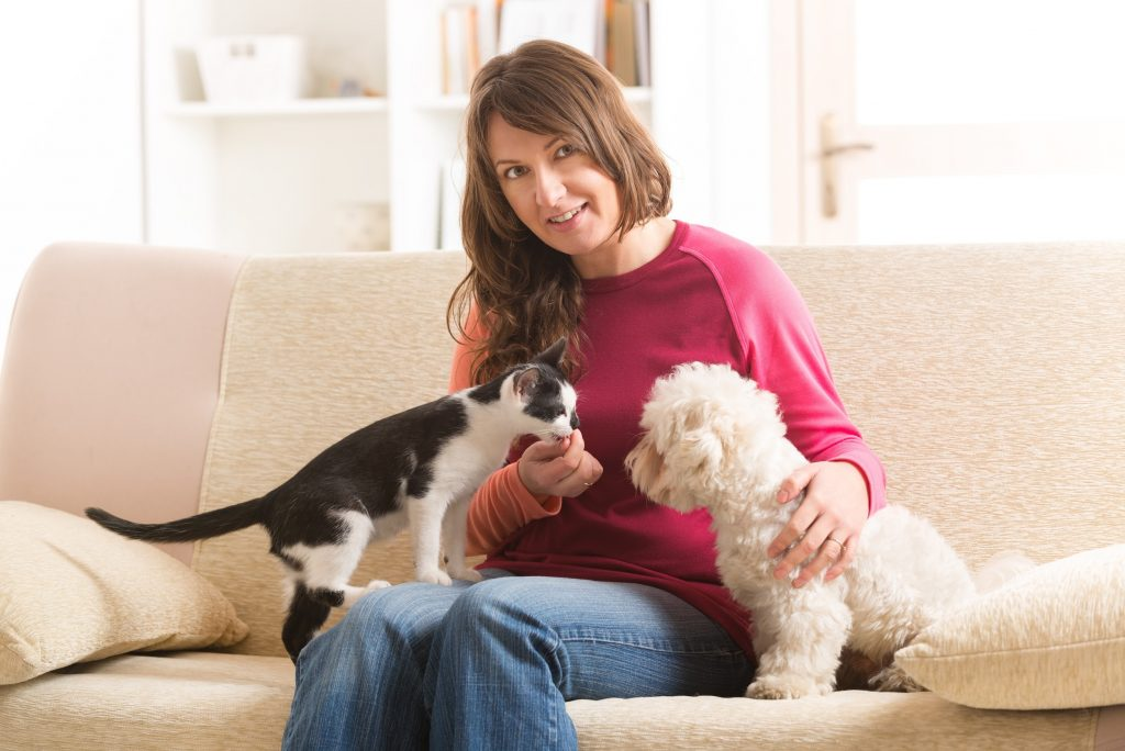 Cats Scratching at Furniture - Paws and Claws Vet Mundaring